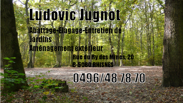 Ludovic Jugnot