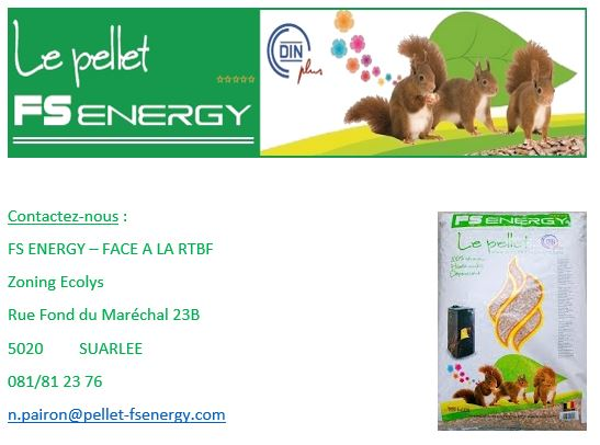 FS-Energy